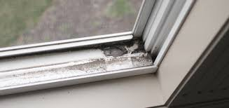 The Top Methods for Cleaning Your Window Tracks